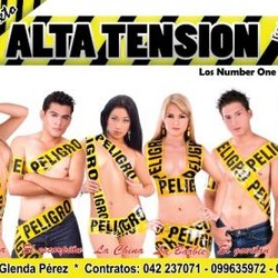 GRUPO MUSICAL MIXTO ALTA TENSION