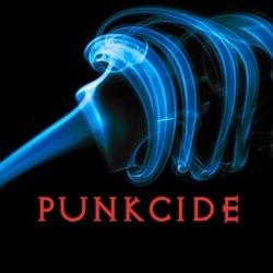 1 er logo de punkcide